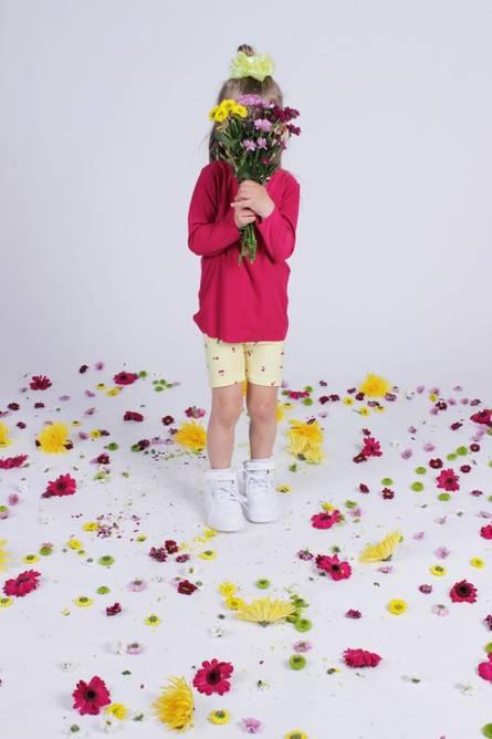 Bilde av ALMA-LS-TOP (KIDS) - CHERRY