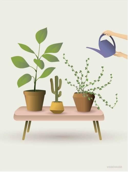 Bilde av Growing plants